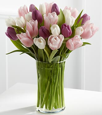 Painted Skies Tulip Bouquet - 25 Stems - VASE INCLUDED