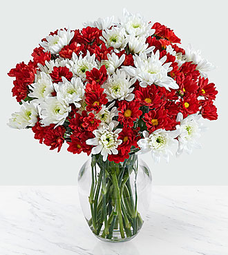 100 Blooms of Christmas Poms