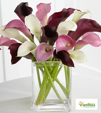 Amethyst Riches Calla Lily Bouquet - 18 Stems - VASE INCLUDED