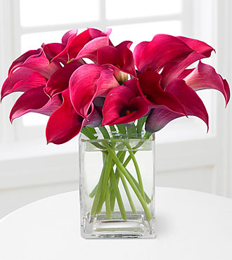 Bold Beauty Calla Lily Bouquet - VASE INCLUDED