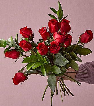 Red 1 Dozen Long Stem Roses - VASE INCLUDED