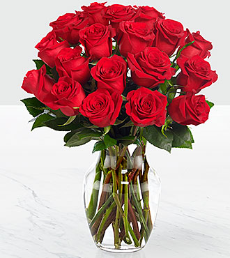 Valentine's Day Red 18 Long Stem Roses - VASE INCLUDED