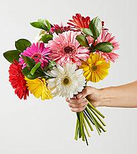 Colorful World Gerbera Daisy Bouquet - No Vase