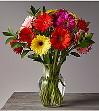 Colorful World Gerbera Daisy Bouquet - 18 Stems - Vase Included