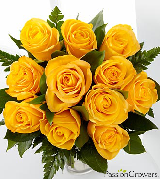 Passion™ for Happiness Rose Bouquet - 12 Stems of 20-inch Roses