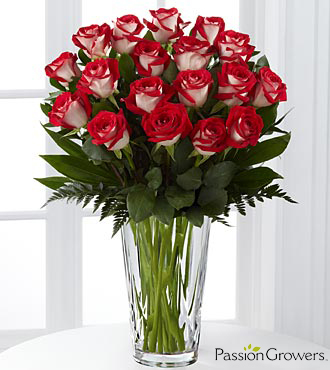 Passion™ for Fun Rose Bouquet - 18 Stems of 20-inch Roses - VASE INCLUDED