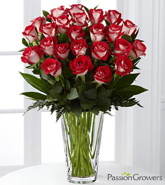 Passion™ for Fun Rose Bouquet - 24 Stems of 20-inch Roses - VASE INCLUDED