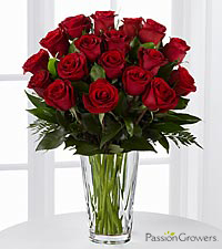 Passion™ for Romance Rose Bouquet - 18 Stems of 20-inch Roses - VASE INCLUDED