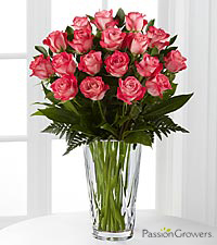 Passion™ for Beauty Rose Bouquet - 18 Stems of 20-inch Roses - VASE INCLUDED