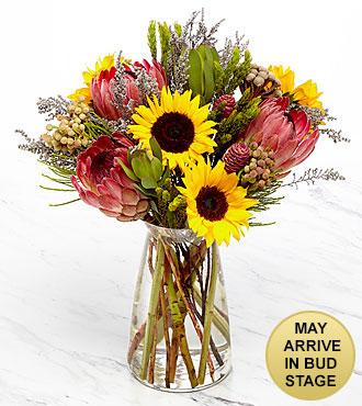 Cape Town Escape Bouquet - VASE INCLUDED
