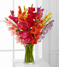 Look to the Rainbow Gladiolus Bouquet - 10 Stems -VASE INCLUDED