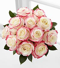 Pretty in Pink Rose Bouquet - 12 Roses- NO VASE