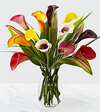 Captured Color Calla Lily Bouquet - 12 stems - VASE INCLUDED