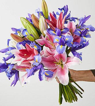 Back to School Best Gerbera Daisy Bouquet - VASE INCLUDED