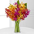 The FTD® Pick Me Up® Bring on the Brights Mokara Orchid Bouquet - 10 Stems - VASE INCLUDED