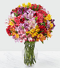 The FTD® Pick Me Up® Rainbow Discovery Peruvian Lily Bouquet - 100 Blooms - VASE INCLUDED