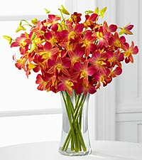Perfect Paradise Orchid Bouquet - 10 Stems - VASE INCLUDED