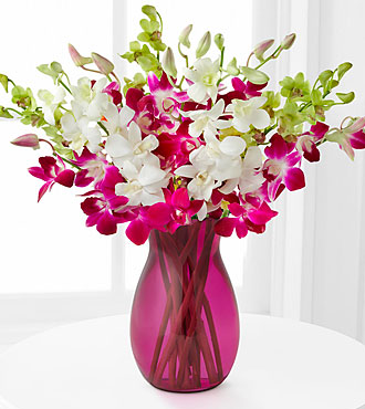 Orchid Illumination Bouquet - 10 Stems - Pink Vase Included