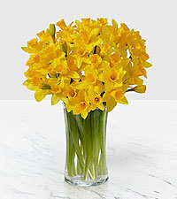 Daffodils now only $19.99!