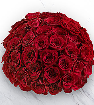 Fifty Red Roses of Romance - NO VASE