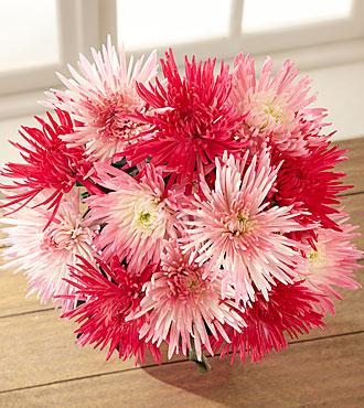 Sweet Escapes Bouquet - 12 Stems - NO VASE