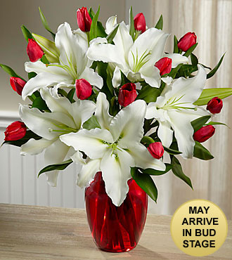 True Joy Bouquet - RED VASE INCLUDED