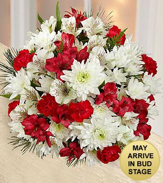Joy to the World Holiday Bouquet - NO VASE