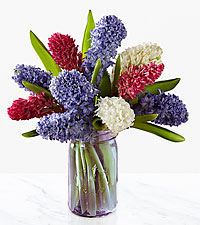Simple Abundance Hyacinth Bouquet - 10 Stems - PURPLE VASE INCLUDED