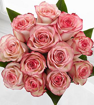 Elite™ Surprises Rose Bouquet - 12 Stems of 18-inch Roses - No Vase