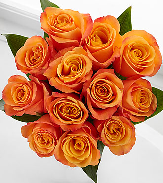 Elite™ Adventure Rose Bouquet - 12 Stems of 18-inch Roses - No Vase