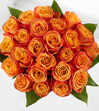 Elite™ Adventure Rose Bouquet - 24 Stems of 18-inch Roses - No Vase