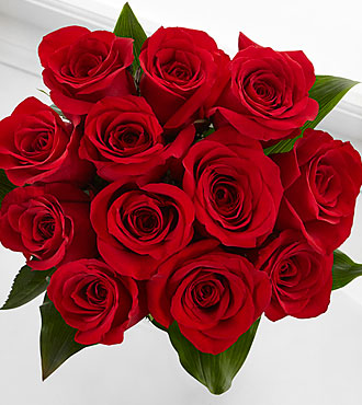 Elite™ Emotion Rose Bouquet - 12 Stems of 18-inch Roses - No Vase