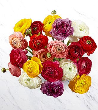 Sun Hugs Ranunculus Bouquet - No Vase