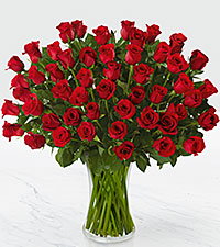 Fifty Long Stem Red Roses