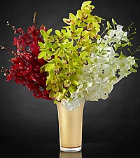 Good as Gold Luxury Orchid Bouquet with Vase