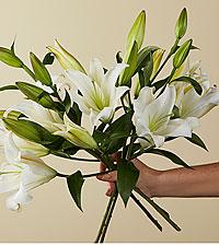 Original Candy Cane Lily Bouquet