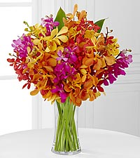 The FTD® Pick Me Up® Bring on the Brights Mokara Orchid Bouquet