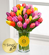 Sunshine Celebration Singing Tulip Bouquet - VASE & SINGING DAISY INCLUDED