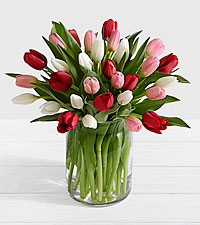 Here in My Heart Valentine Tulip Bouquet VASE INCLUDED