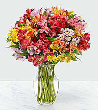 The FTD® Pick Me Up® Rainbow Discovery Peruvian Lily Bouquet