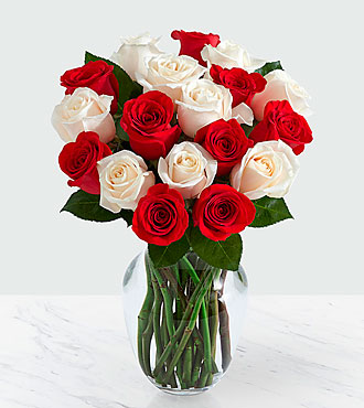 18 Candy Cane Roses