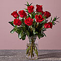 1 Dozen Long Stem Red Roses