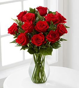 Valentine's Day Red 1 Dozen Long Stem Roses