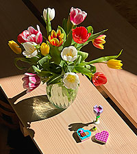 15 Mixed Tulips with Vase and LEGO Bloom Builder Bundle