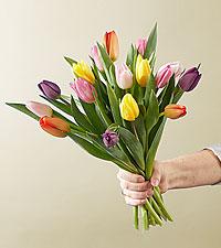 15 Stem Spring Breeze Multicolored Tulip Bouquet