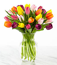 Rush of Color Assorted Tulip Bouquet  - 20 Stems - VASE INCLUDED