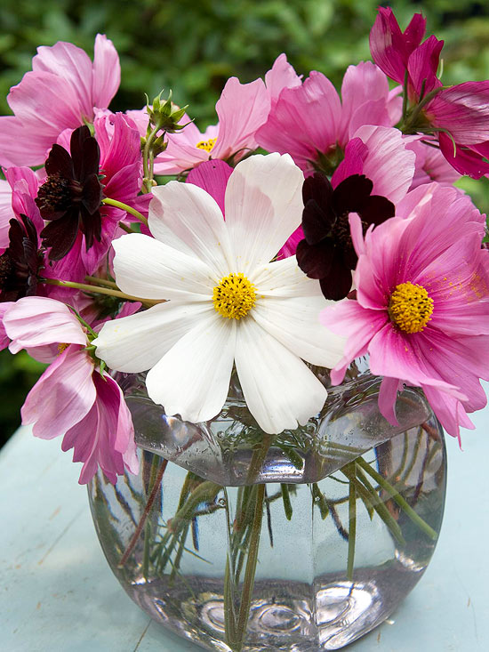 Fish Bowl Flower Arrangement for Mom