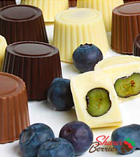 Chocolate Dip Delights™ Real Chocolate Covered Blueberries - 24-piece