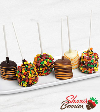 Belgian Chocolate Dipped Marshmallow Pops