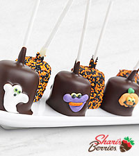 Belgian Chocolate Dipped Halloween Fun Marshmallow Pops